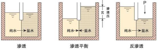 反渗透纯水设备工作原理图